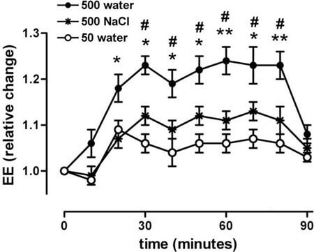 water-boosts-metabolism(1)