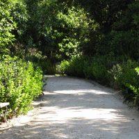 22 σημεία στην Αθήνα που μπορείς να απολαύσεις το τρέξιμο