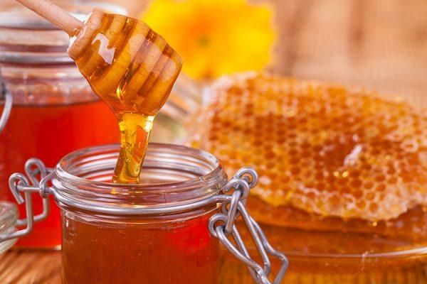 Μέλι: Όλα τα είδη της υπερτροφής της Ελληνικής φύσης