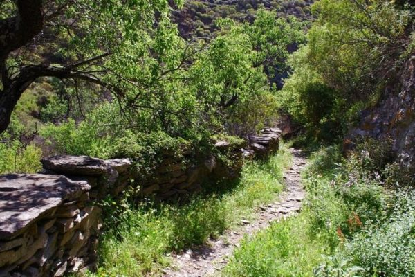 Kea Challenge: Αγώνες ορεινού τρεξίματος στην Κέα