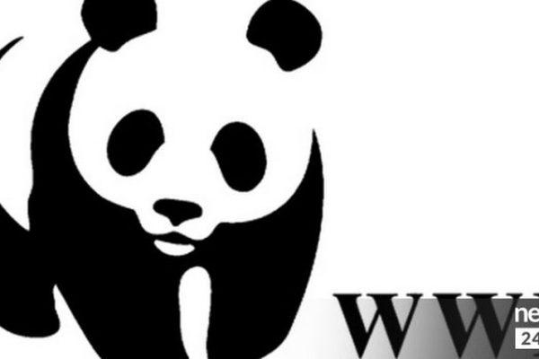 Στον 8ο Ημιμαραθώνιο της Αθήνας, τρέχουμε με το WWF Ελλάς